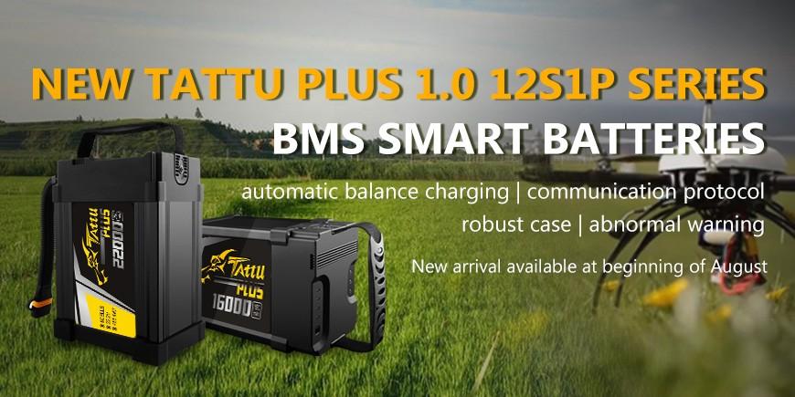 New Tattu Plus 1.0 12S1P Series BMS Smart Batteries